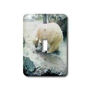 Renderly Yours Bears   Cute Polar Bear Cub Playing   Light