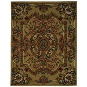 Savonnerie Collection 202A Hand Woven Traditional Wool Rug