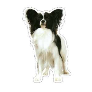 PAPILLION   Dog Decal   sticker dogs car got graphic